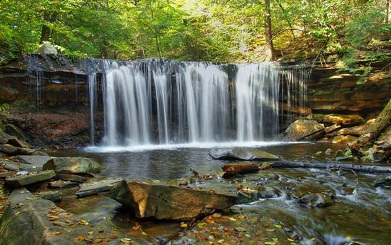 Fondos de pantalla Hermosa cascada, rocas, bosque