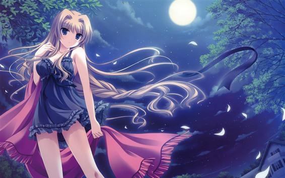 Fondos de pantalla Chica rubia de anime, noche, luna.