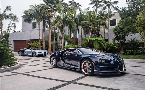 Papéis de Parede Supercarro Bugatti azul, palmeiras