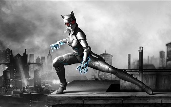 Fondos de pantalla Catwoman, juego para PC