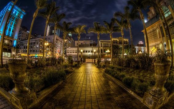 Обои Городская ночь, дома, пальмы, огни, Сан-Диего, США