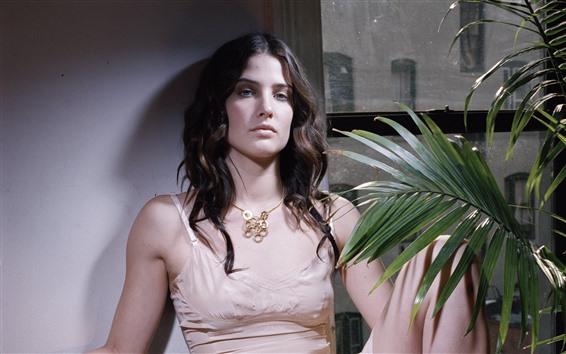 Fondos de pantalla Cobie Smulders 07