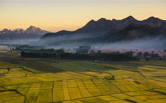 Fondos de pantalla Campo, campos dorados, montañas, niebla, mañana