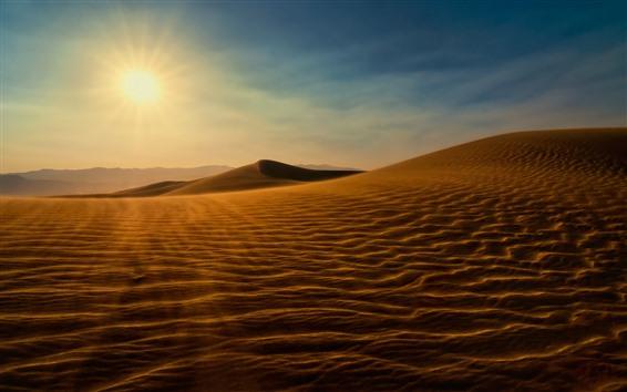Fondos de pantalla Desierto, sol, arena, sombra.