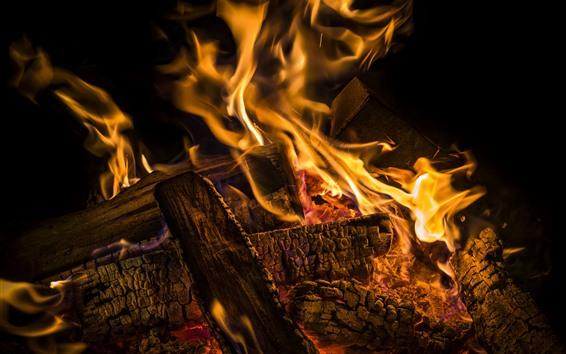 Fondos de pantalla Leña, fuego, llama