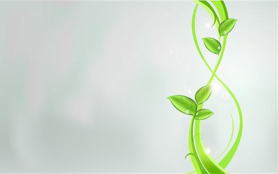 Обои Зеленые листья, растение, серый фон, креативный дизайн