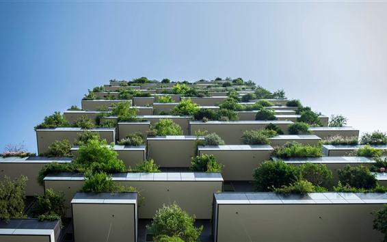Обои Дом, балкон, растение, небо