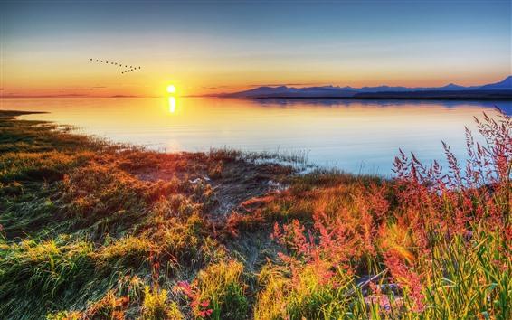 Fondos de pantalla Lago, hierba, atardecer, vuelo de pájaros, montañas.