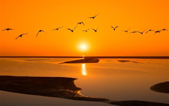 Fondos de pantalla Lago, agua, puesta del sol, vuelo de los pájaros