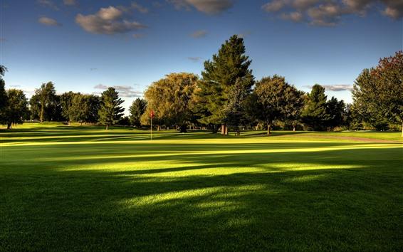 Fondos de pantalla Césped, campo de golf, árboles