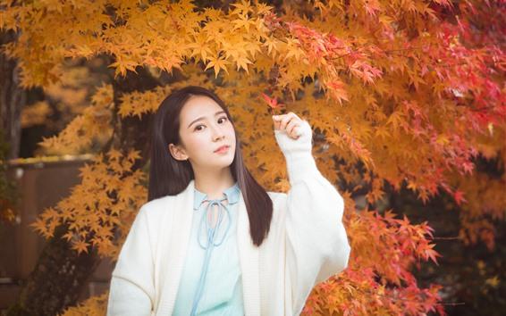 Fondos de pantalla Chica China encantadora, pelo largo, hojas de arce, otoño