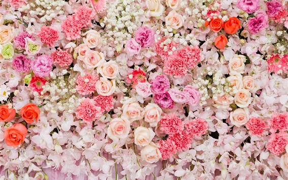Fondos de pantalla Muchas flores de fondo, rosas, clavel.