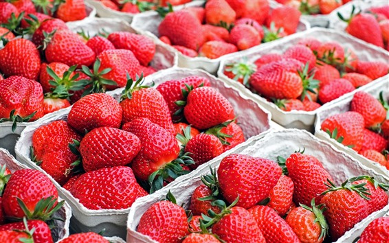 Wallpaper Many strawberries, fresh fruit