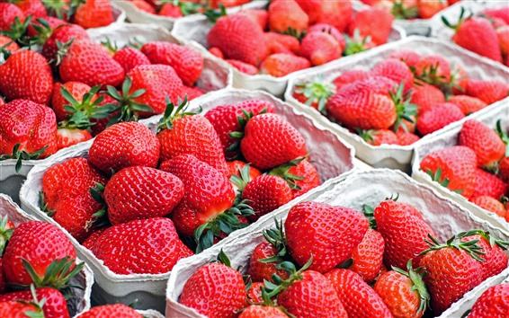 Fond d'écran Beaucoup de fraises, fruits frais
