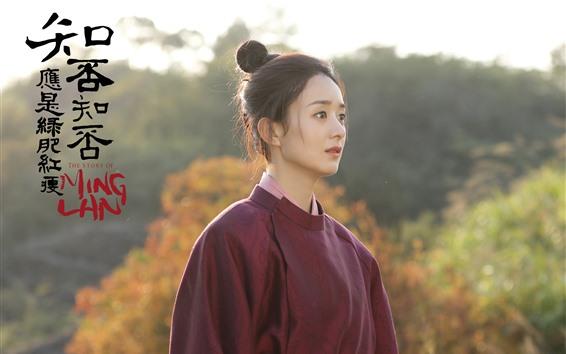 Papéis de Parede MingLan, a história de MingLan