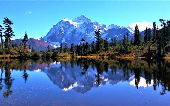 Fond d'écran Mont baker, neige, arbres, lac, reflet eau, usa