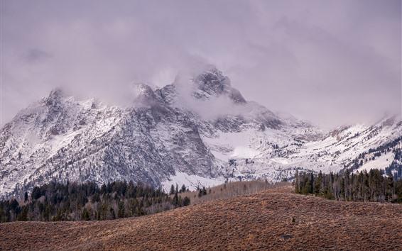 Fondos de pantalla Montaña, nieve, pico, niebla, invierno, naturaleza