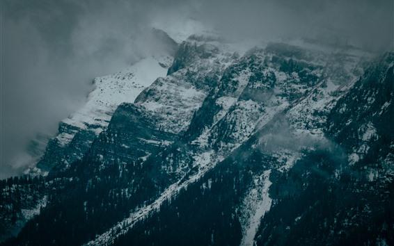 Fondos de pantalla Montañas, rocas, nieve, invierno, niebla