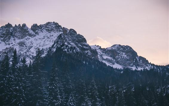 Fondos de pantalla Montañas, árboles, rocas, nieve, invierno.