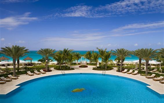 Fondos de pantalla Palmeras, piscina, Resort, tropical