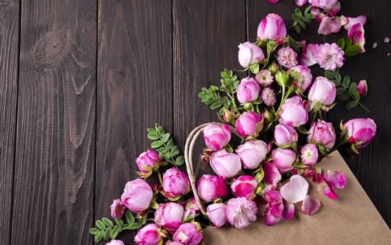배경 화면 핑크 장미, 꽃, 나무 판자