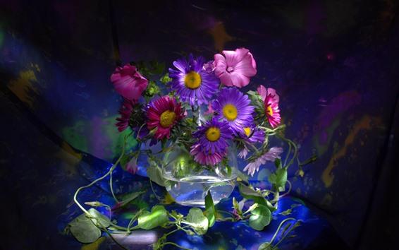 Обои Пурпурные и розовые Астрас, Стеклянный горшок