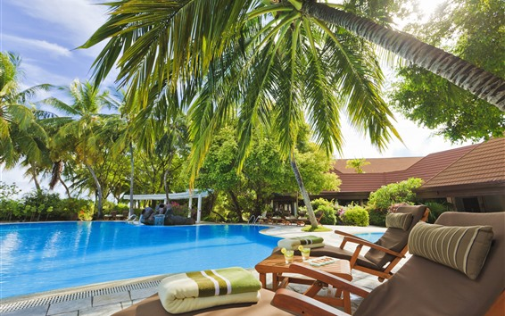 Fondos de pantalla Resort, piscina, sillas, palmeras, sol, tropical