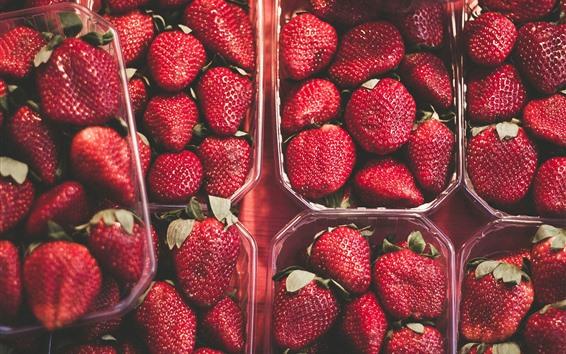 Fondos de pantalla Fresas maduras, frutas