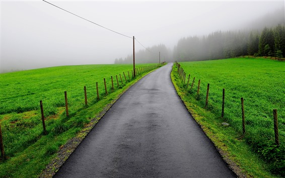 Papéis de Parede Estrada, campos verdes, árvores, cerca, névoa, manhã