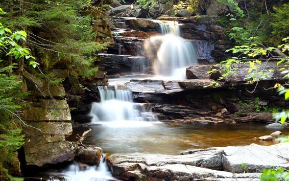 Fondos de pantalla Rocas, cascada, arbustos