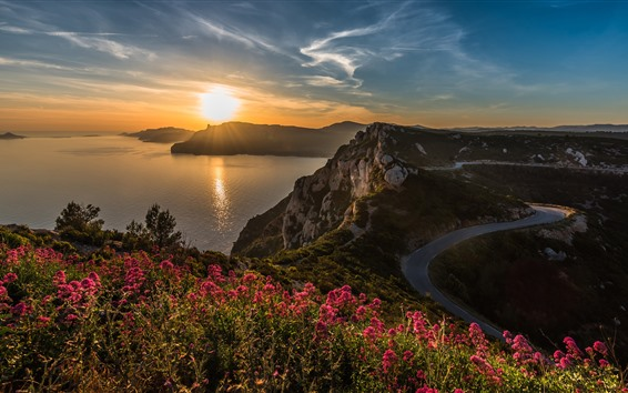 Fondos de pantalla Mar, flores, rocas, camino, salida del sol, mañana