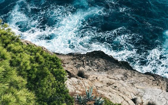 Fondos de pantalla Mar, espuma, Costa, hierba