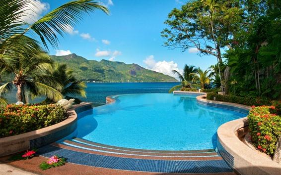 Fondos de pantalla Mar, piscina, balneario, palmeras, tropical