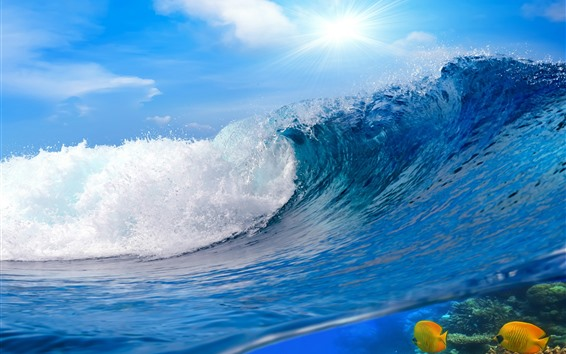 壁紙 海の波、水ロール、魚、太陽光線