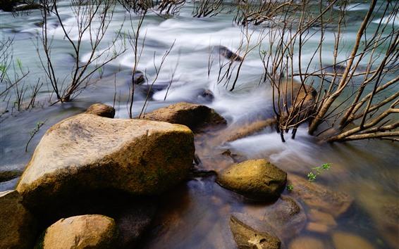 Обои Камни, водный поток, река, ветки