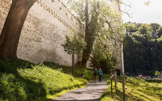 Wallpaper Switzerland, Luzern, path, trees, wall, sunshine