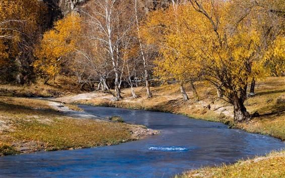 Fondos de pantalla Árboles, río, otoño, naturaleza.