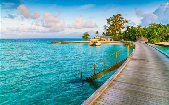 Fondos de pantalla Tropical, paraíso, palmeras, balneario, mar.