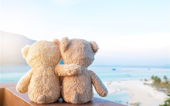 Обои Два плюшевых медведей, друзья, вид сзади