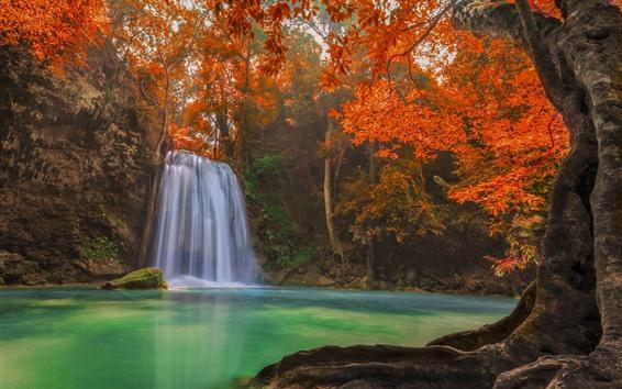Fondos de pantalla Cascada, hojas rojas, otoño