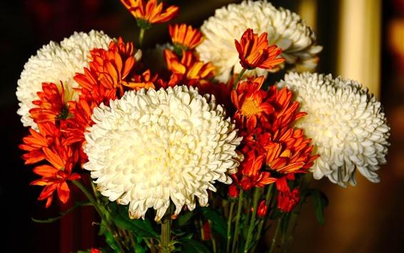 Wallpaper White and orange chrysanthemums