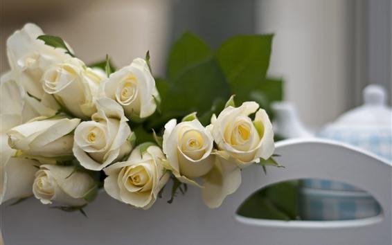 Fondos de pantalla Rosas blancas, brumosas
