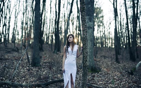Fondos de pantalla Falda blanca niña, solitaria, arboles, rayos de sol.
