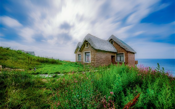 Wallpaper Wildflowers, green grass, house, sea, blue sky, clouds