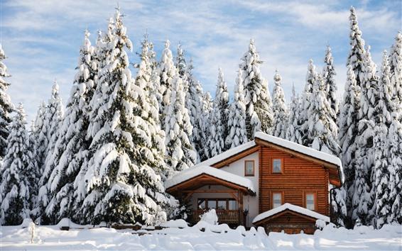 Fondos de pantalla Invierno, casa de madera, nieve gruesa, árboles