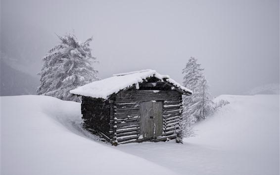 Fondos de pantalla Casa de madera, nieve, árboles, invierno