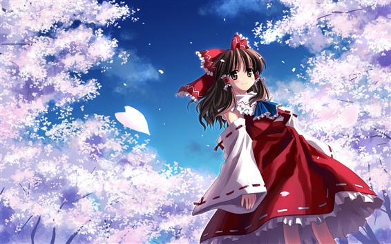 Papéis de Parede Menina bonita do anime, Sakura cor-de-rosa, pétalas
