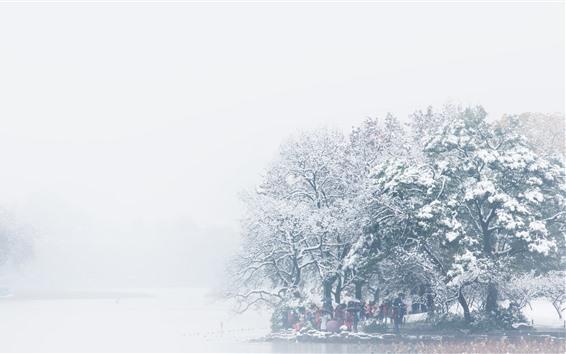 Papéis de Parede Inverno bonito, árvores, rio, neve, névoa, manhã, nebuloso, China