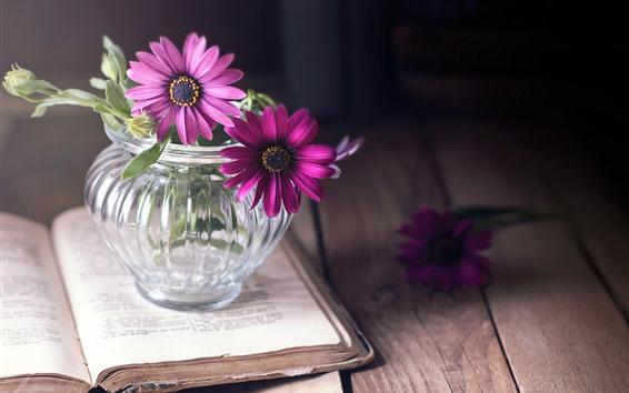 Fondos de pantalla Libro, flores rosas, tablero de madera.