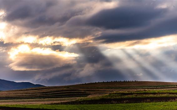 壁紙 川西、阿坝、フィールド、雲、太陽光線、中国